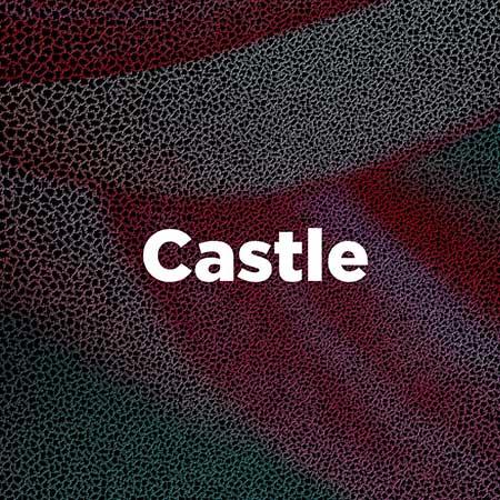 FESTIVAL FORTE CASTLE